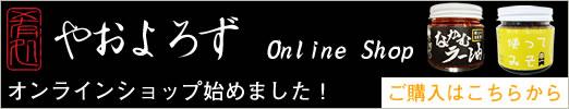 online_baner